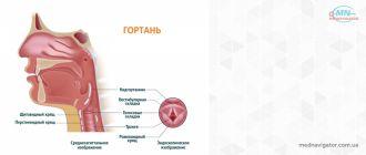 Заболевания нервного аппарата гортани