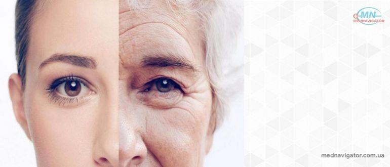 Загадка старения.