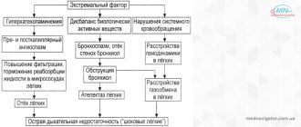 Значение изменения отдельных показателей внутрисосудистого гомеостаза в развитии циркуляторной гипоксии при старении