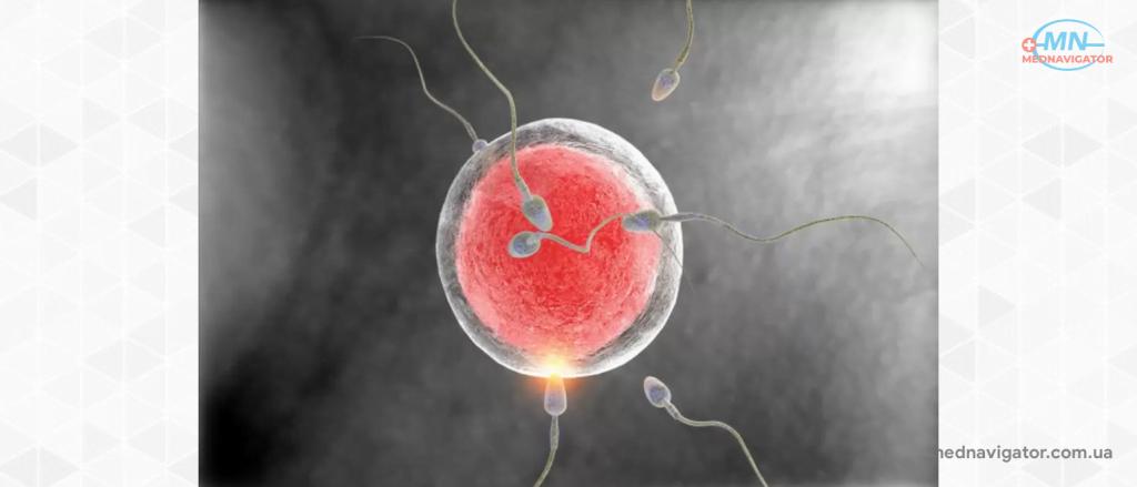 Какие методы лечения бесплодия существуют в настоящее время?